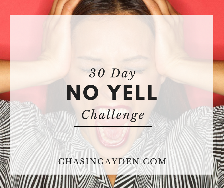If you struggle with yelling at your children, take on this 30-day, No-Yell Challenge with a community of other mamas. https://chasingmcallisters.com/30-day-no-yell-challenge